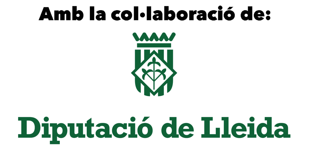 logo diputaciolledia